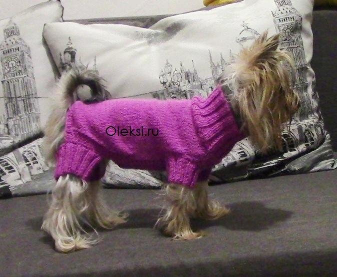 свитер для йорка спицами вязание на Oleksiru