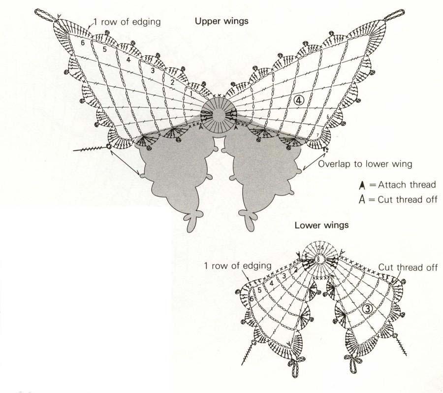 захомячить схему бабочки